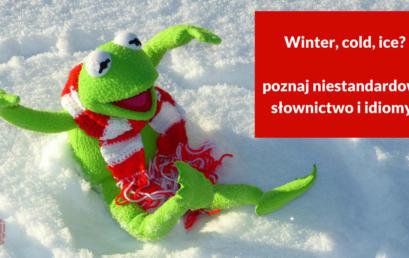 Winter, cold, ice? Poznaj niestandardowe słownictwo i idiomy!